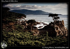 View from 17 Mile drive