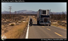 Sharing the road in Baja California