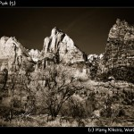 Zion National Park (5)