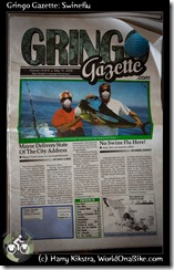Gringo Gazette: Swineflu