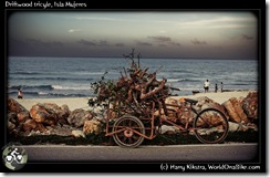 Driftwood tricyle, Isla Mujeres